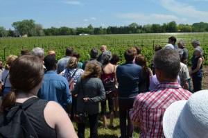 Nos invités ont eu l'occasion de découvrir tout le processus de préparation du vin.