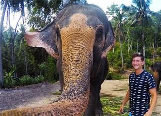 elefante go pro selphie
