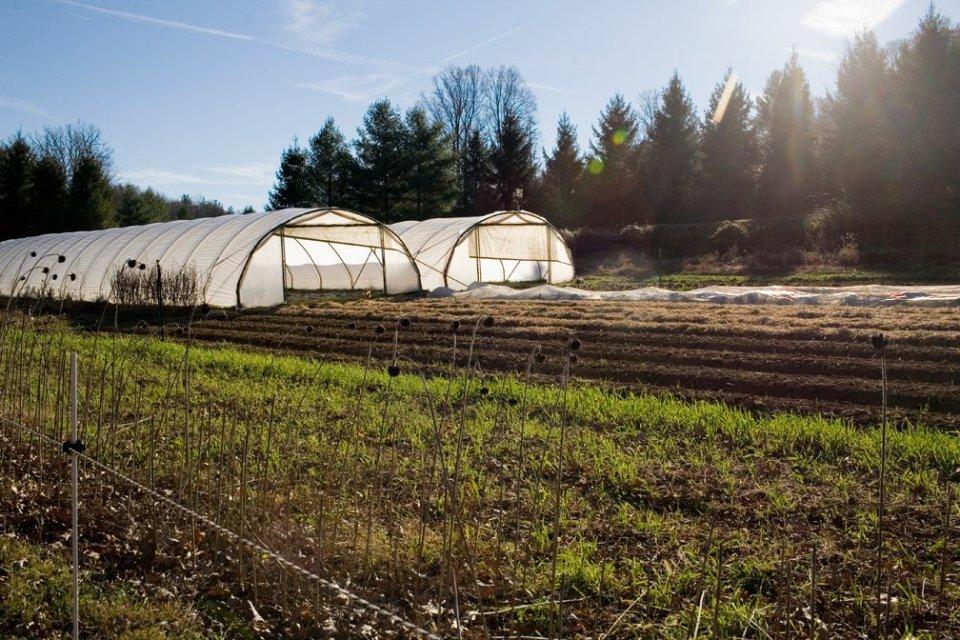firefly farm, elizabeth gibbs, scott paquin,