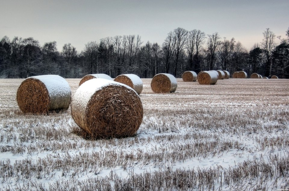 Winter-Bales-4d5f95c15b0a4_hires