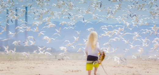 """Kids and Terns"", Beedie's Photos (CC BY-NC 2.0)"