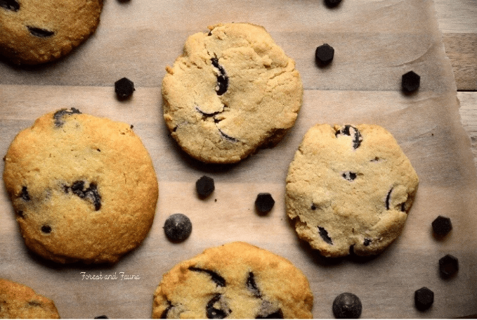 Low-Carb Chocolate Chip Cookies from Forest & Fauna