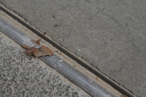 Sand and fallen leaves cover the tram tracks in William Street