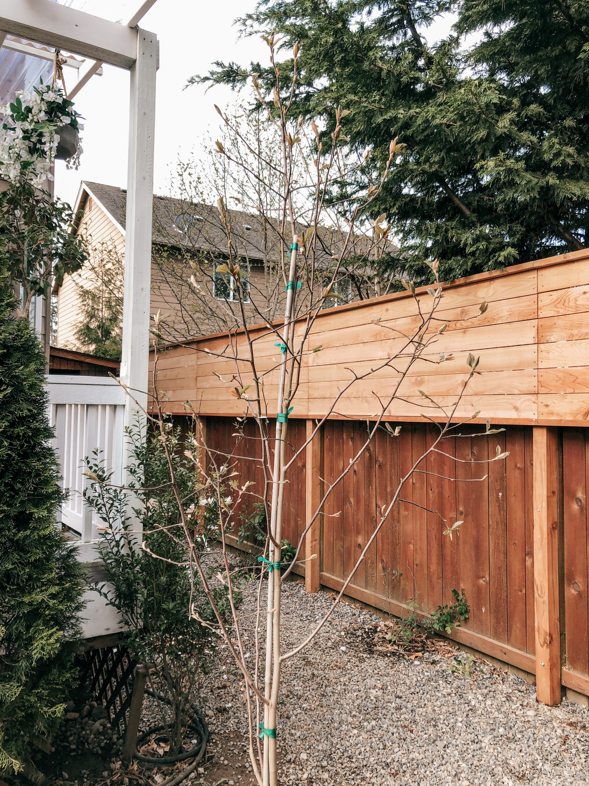 Diy Horizontal Privacy Fence A Cedar Fence Extension Project Rain And Pine