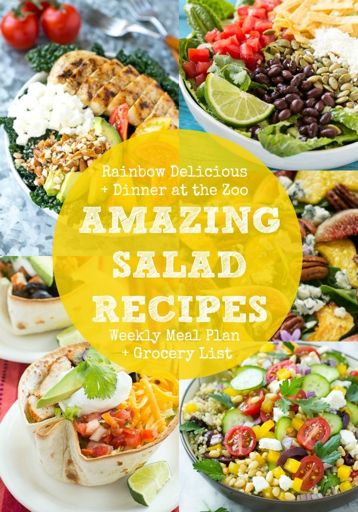 Amazing Salad Recipes Meal Plan with Dinner at the Zoo - Rainbow - weekly dinner meal plans