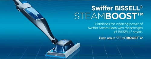how to use a steam mop on carpet