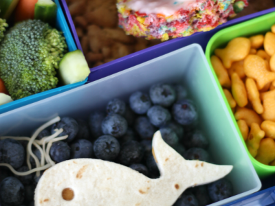 Ocean bento lunch ideas