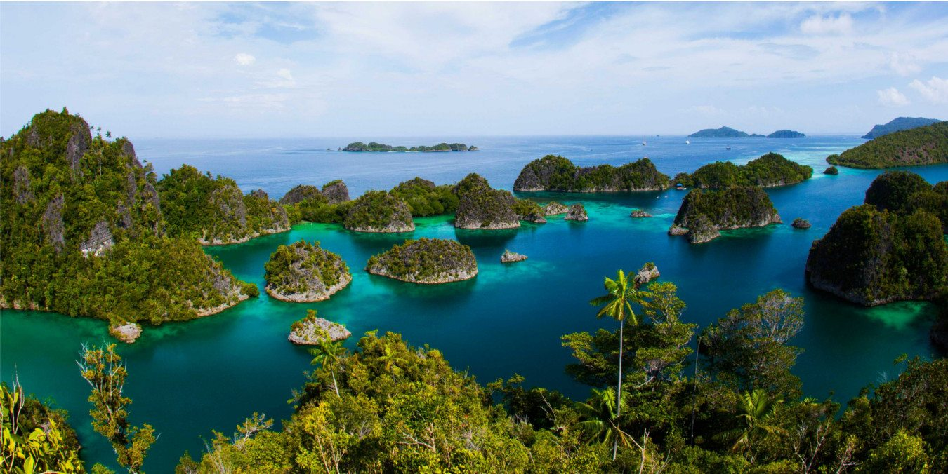 Coral Reef Wallpaper Hd The Best Indonesian Islands Raja Ampat Biodiversity Eco
