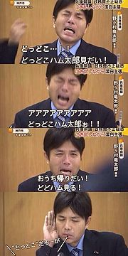 Ryutaro Nonomura (野々村 竜太郎), the crying politician and his internet fame : Hysterical Nonomura Parody