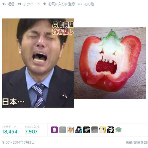 Ryutaro Nonomura (野々村 竜太郎), the crying politician and his internet fame : Hysterical Nomura and his pepper likeness