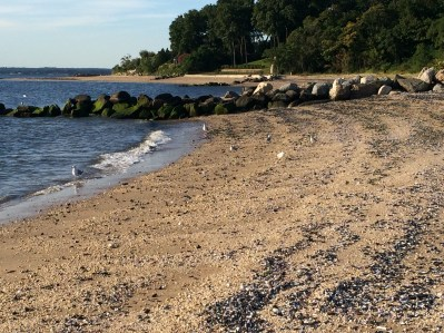 Sands Point Beach