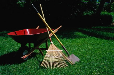 Spring Yard Work Safety - Choice Therapy