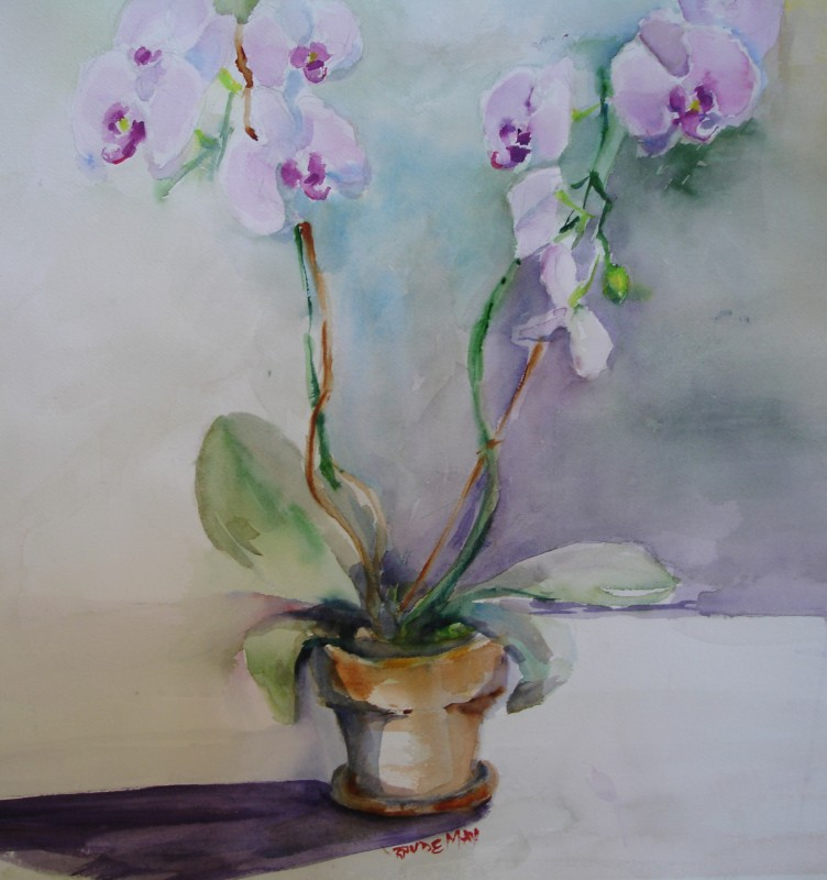 Rande-May-Orchid