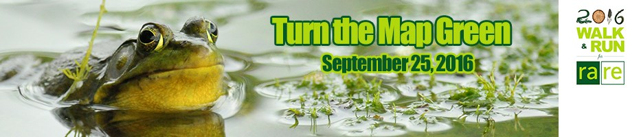 Turn the Map Green September 25, 2016, frog in the pond