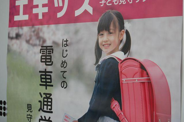 橋本環奈493