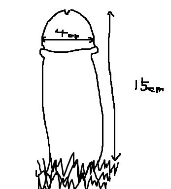 kitou28