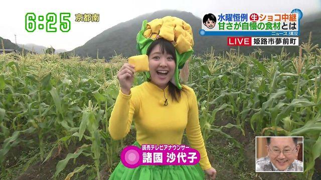 syokokusayoko13