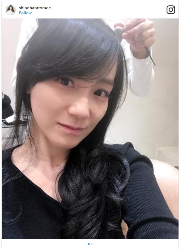 sinoharatomoe41
