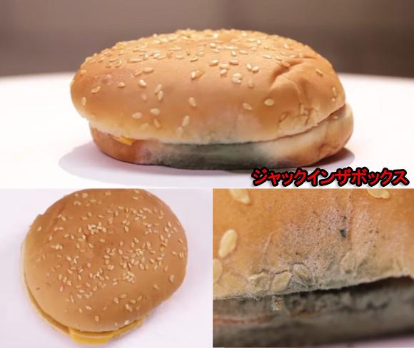 ハンバーガー5
