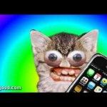 I've Got An iPhone