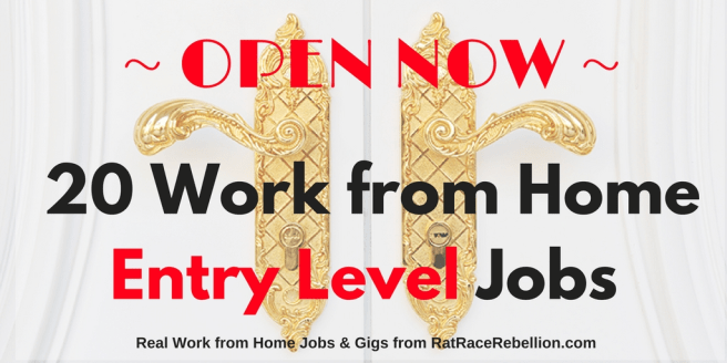 10 Work from Home Entry Level Jobs Open NOW (1)