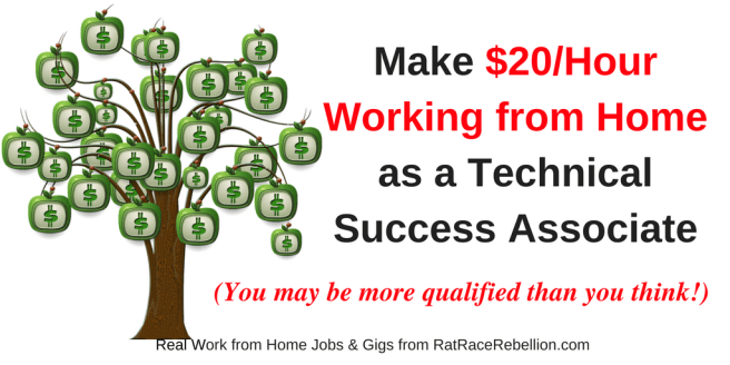 Make $20/Hour Working from Home as a Technical Success Associate