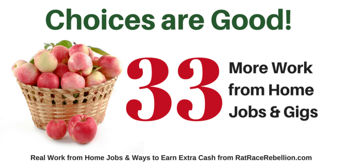 33 MORE Work from Home Jobs OPEN NOW!