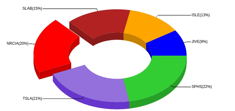 animated pie charts - Peopledavidjoel