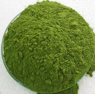 Moringa_powder_1_