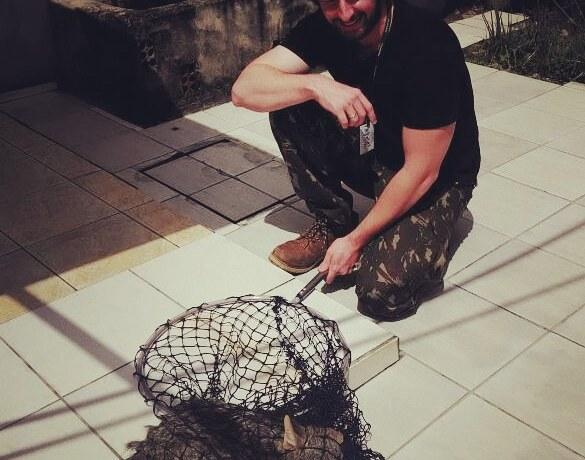 Equipe da Fujama resgata dois animais silvestres em menos de 24 horas