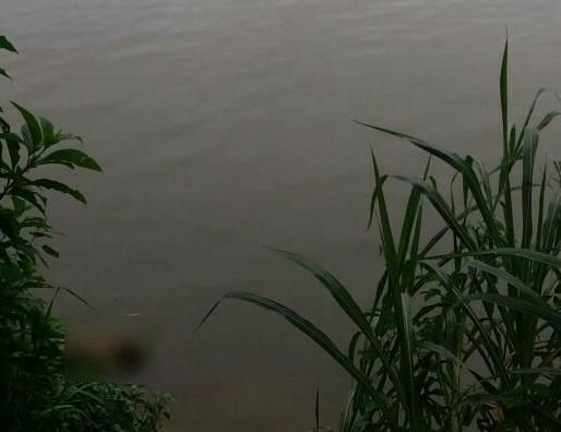 Corpo foi encontrado na tarde desta terça-feira, no Rio Itapocu l Foto: Divulgação