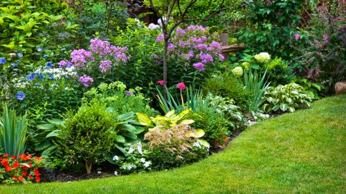 Medium Of Pictures Of Yards Landscaped