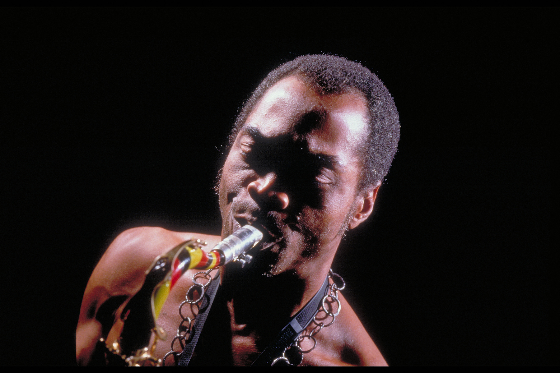 Fela Kuti A Celebration Of Afro Beat Tony Hilliers World Of Music