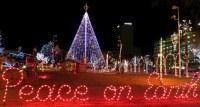 Outdoor Christmas Lights Peace On Earth ...