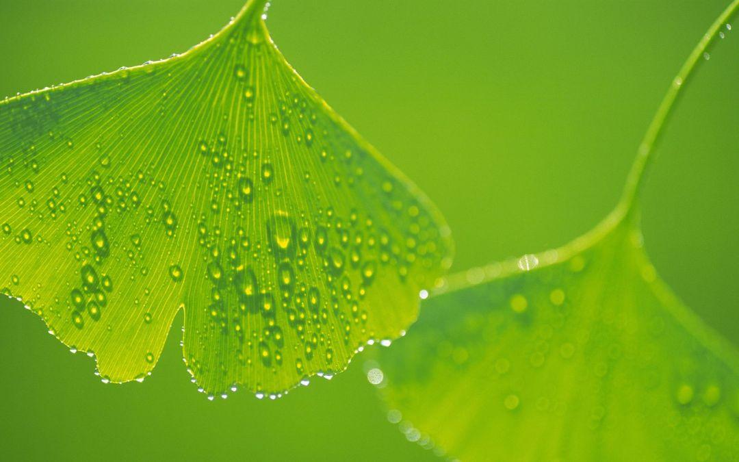 001 (www.cute-pictures.blogspot.com)
