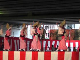 2015年 経堂まつり サンバカーニバルと農大応援団に注目!