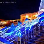 2015年 八景島シーパラダイス 恒例のクリスマス花火情報