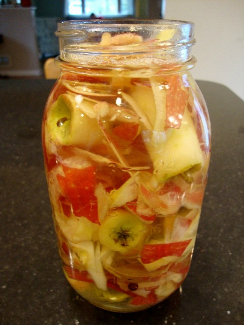 Apple scraps soaking in honey water