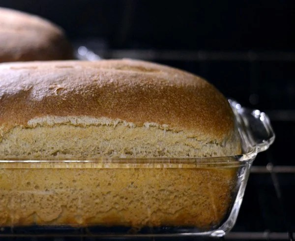 The bread keeps on rising as it bakes in the oven.