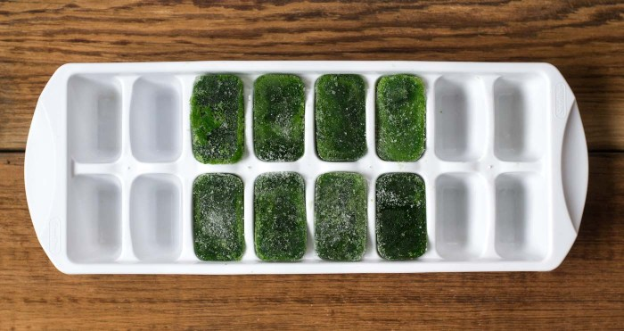 Kale cubes are a great healthy addition to this tropical green smoothie recipe.