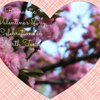 Top Romantic Places to Enjoy Valentine's Day in North Texas