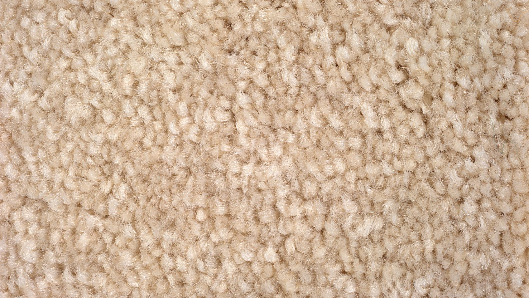 High Pile Carpet Learning The Lingo Unravel The Real Words For Carpets And