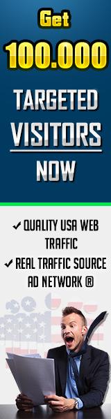 100% USA Web Traffic