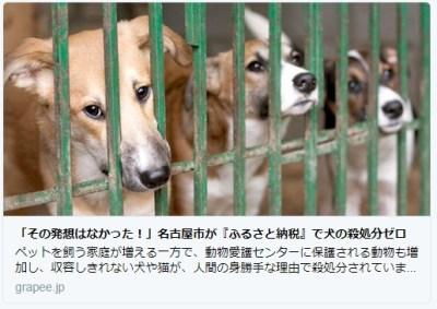 すばらしい発想!「ふるさと納税」で 犬の殺処分ゼロ