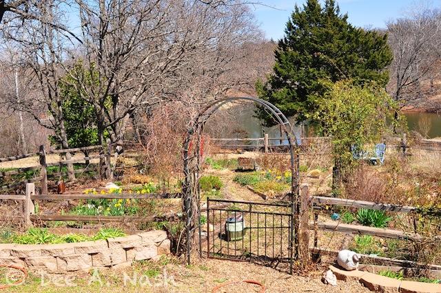 Back garden spring