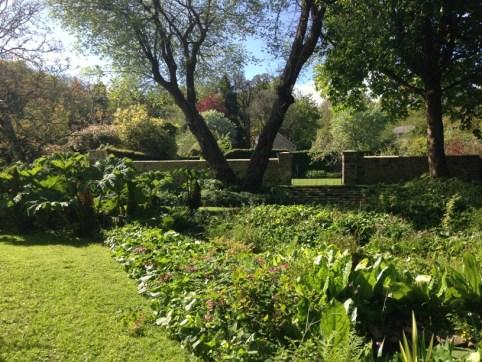 water garden view