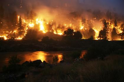 The Politics of Fire Suppression: Did Bush Administration Budget Cuts Cause Bigger Wildfires?