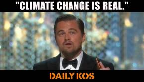 Leo DiCaprio wins Oscar for Best Climate Activist!