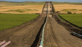 nodapl-pipeline-by-tony-webster