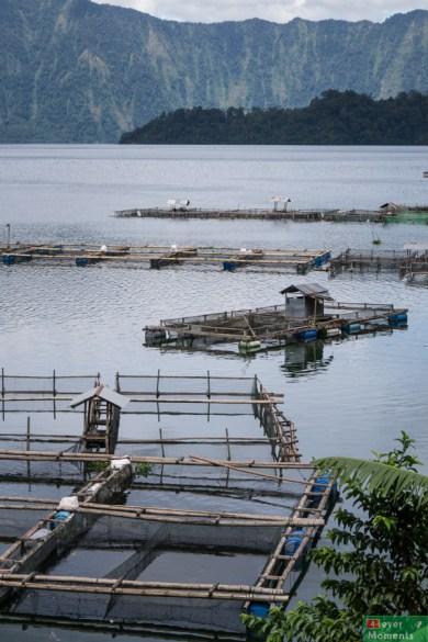 Farmy rybne przy brzegu jeziora